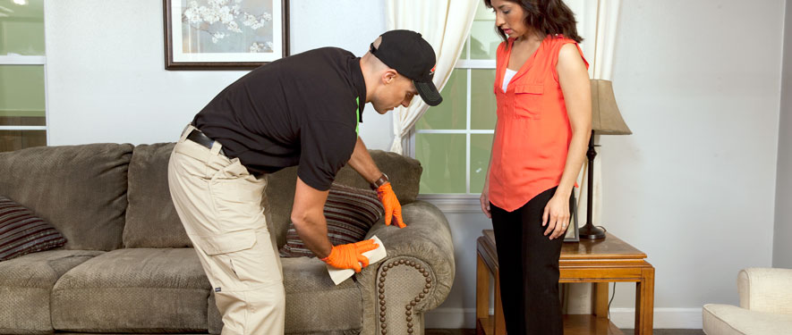 Colton, CA carpet upholstery cleaning